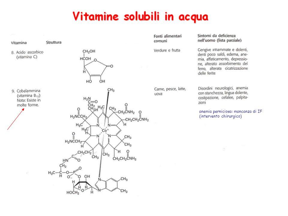 Vitamina C: acido ascorbico Funzione: -trasportatore di elettroni -mobilizza il ferro allinterno del corpo -migliora le risposte allergiche (stimolazione del sist.