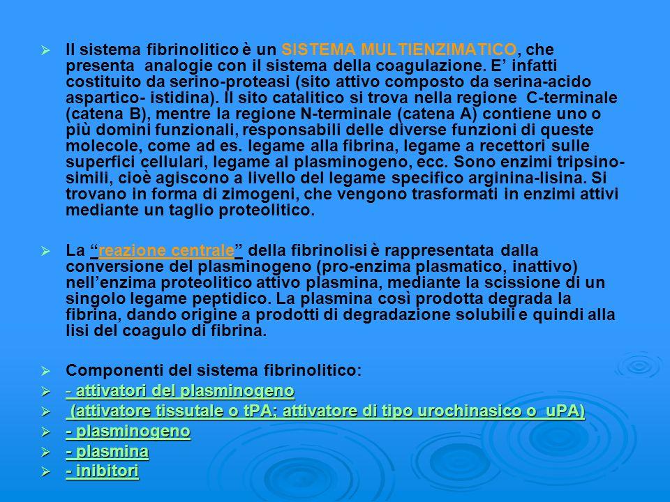 Il sistema fibrinolitico è un SISTEMA MULTIENZIMATICO, che presenta analogie con il sistema della coagulazione. E infatti costituito da serino-proteas