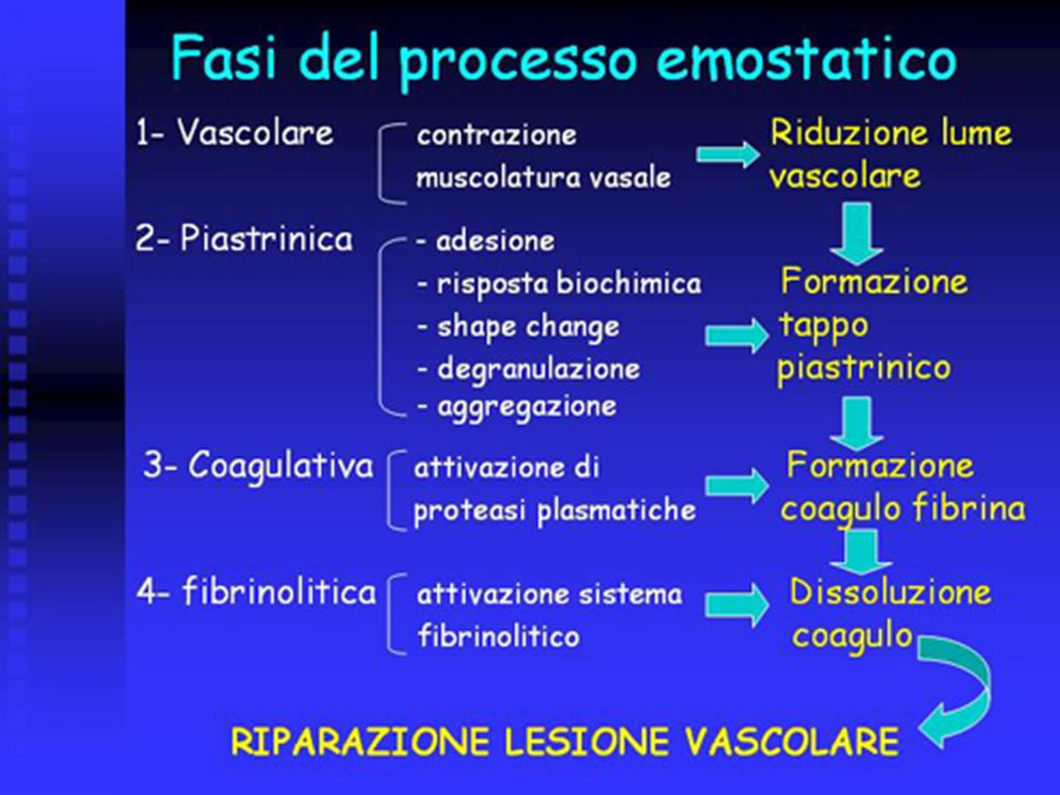 FASE VASCOLARE CONTRAZIONE VASALE Contrazione delle cellule muscolari lisce dei vasi Riflesso neurovegetativo vasomotore (nerva vasorum) SOSTANZE VASOCOSTRITTRICI Endotelina Serotonina ed istamina