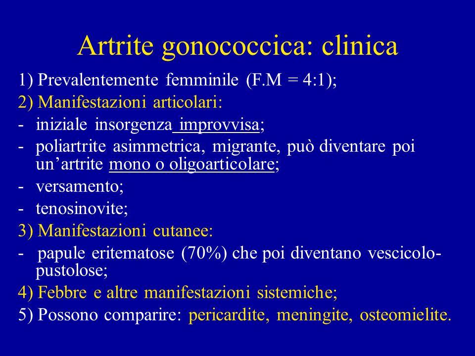 Artrite gonococcica: clinica 1) Prevalentemente femminile (F.M = 4:1); 2) Manifestazioni articolari: -iniziale insorgenza improvvisa; -poliartrite asimmetrica, migrante, può diventare poi unartrite mono o oligoarticolare; -versamento; -tenosinovite; 3) Manifestazioni cutanee: - papule eritematose (70%) che poi diventano vescicolo- pustolose; 4) Febbre e altre manifestazioni sistemiche; 5) Possono comparire: pericardite, meningite, osteomielite.