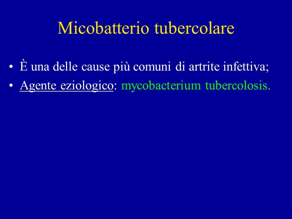 Micobatterio tubercolare È una delle cause più comuni di artrite infettiva; Agente eziologico: mycobacterium tubercolosis.