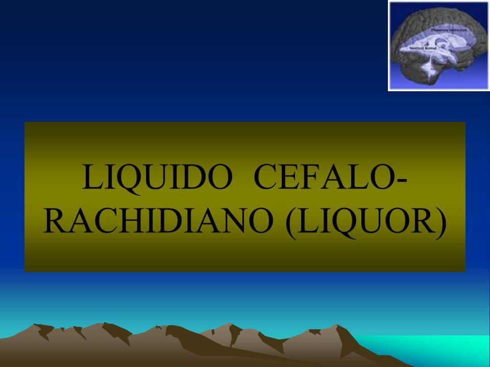 LIQUIDO CEFALO- RACHIDIANO (LIQUOR)