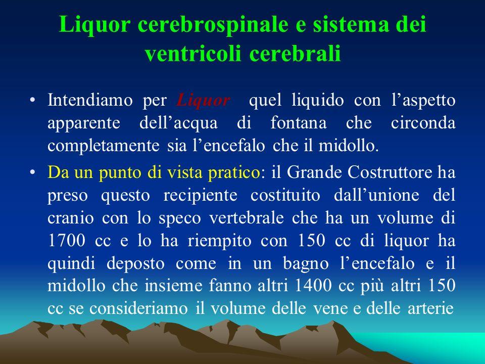 Liquor cerebrospinale e sistema dei ventricoli cerebrali Intendiamo per Liquor quel liquido con laspetto apparente dellacqua di fontana che circonda c