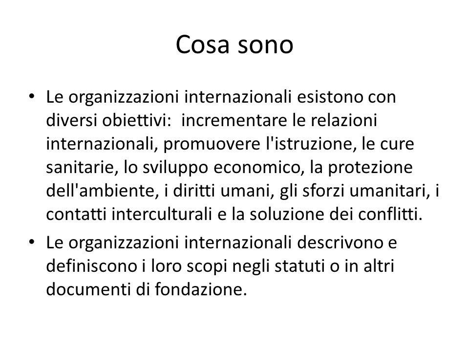 Cosa sono Le organizzazioni internazionali esistono con diversi obiettivi: incrementare le relazioni internazionali, promuovere l'istruzione, le cure