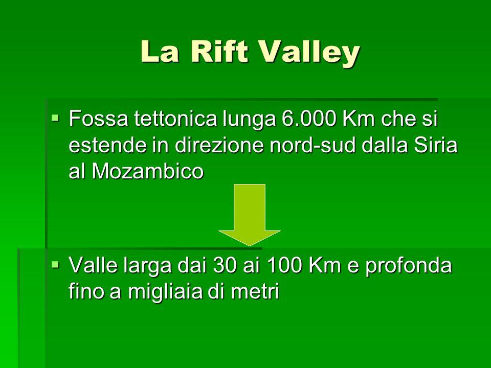 La Rift Valley Fossa tettonica lunga 6.000 Km che si estende in direzione nord-sud dalla Siria al Mozambico Fossa tettonica lunga 6.000 Km che si este