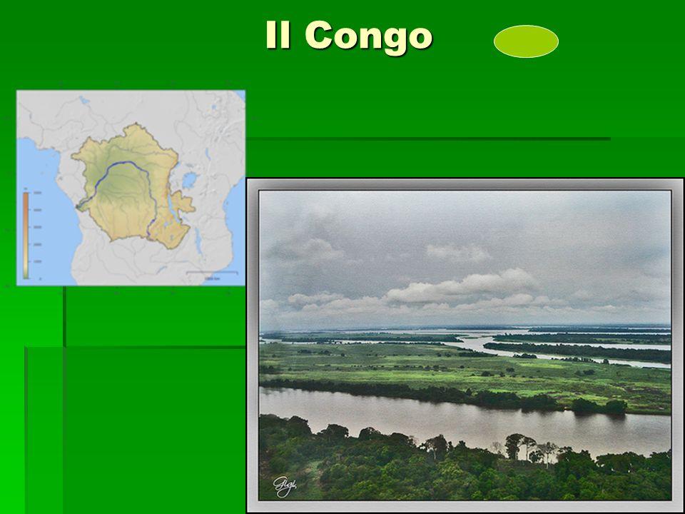 Il Congo