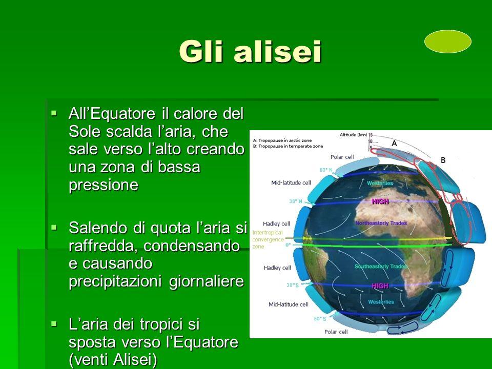 Gli alisei AllEquatore il calore del Sole scalda laria, che sale verso lalto creando una zona di bassa pressione AllEquatore il calore del Sole scalda