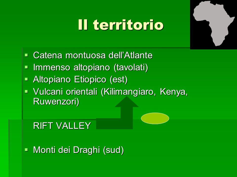 Il territorio Catena montuosa dellAtlante Catena montuosa dellAtlante Immenso altopiano (tavolati) Immenso altopiano (tavolati) Altopiano Etiopico (es