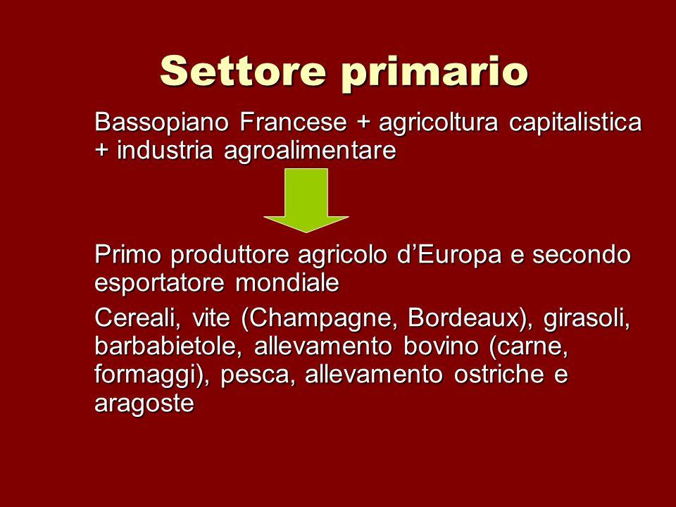 Settore primario Bassopiano Francese + agricoltura capitalistica + industria agroalimentare Primo produttore agricolo dEuropa e secondo esportatore mo