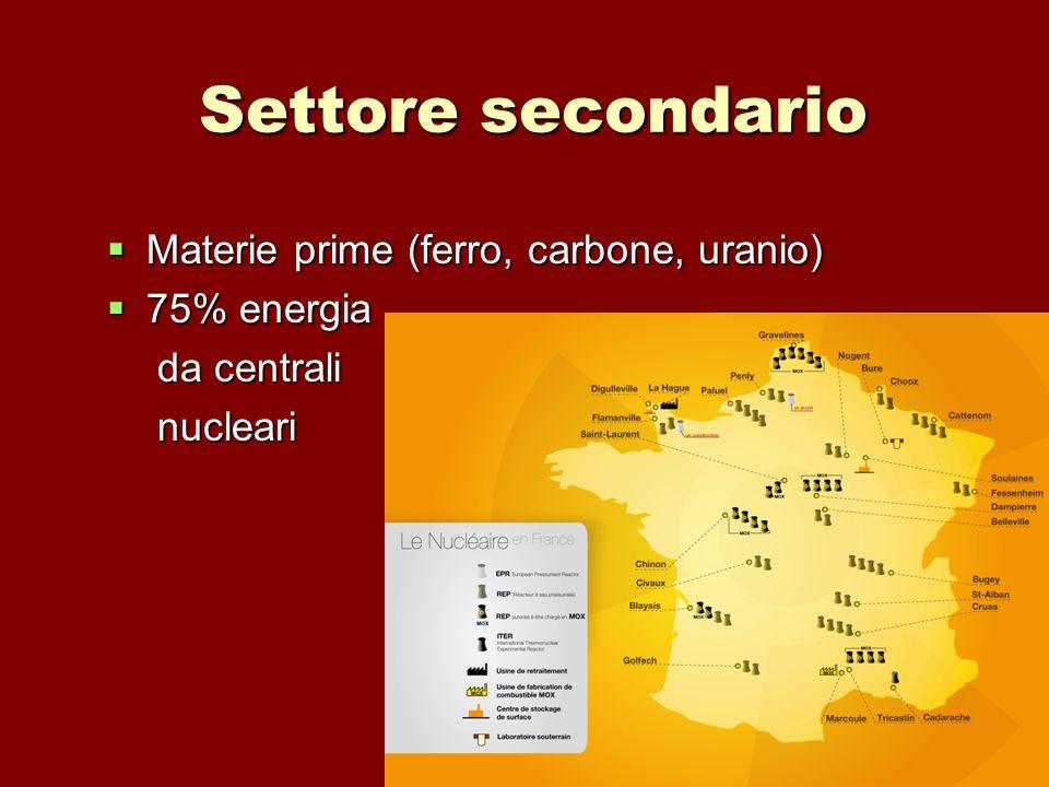 Settore secondario Materie prime (ferro, carbone, uranio) Materie prime (ferro, carbone, uranio) 75% energia 75% energia da centrali da centrali nucle