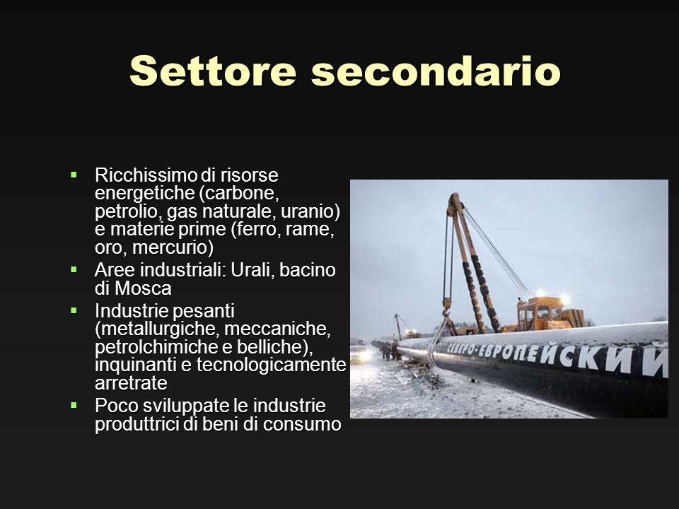 Settore secondario Ricchissimo di risorse energetiche (carbone, petrolio, gas naturale, uranio) e materie prime (ferro, rame, oro, mercurio) Ricchissi