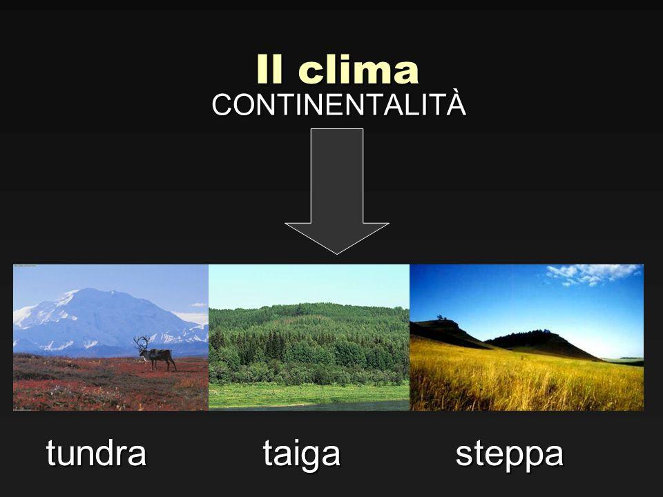 Il clima CONTINENTALITÀ tundra taiga steppa tundra taiga steppa