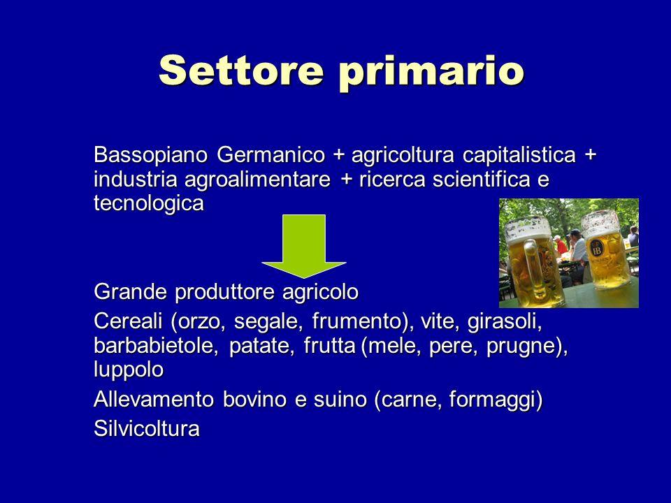 Settore primario Bassopiano Germanico + agricoltura capitalistica + industria agroalimentare + ricerca scientifica e tecnologica Grande produttore agr