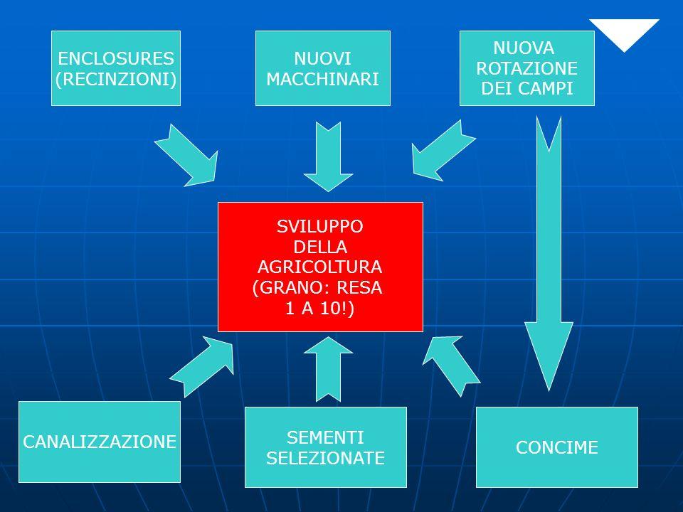 ENCLOSURES (RECINZIONI) NUOVA ROTAZIONE DEI CAMPI NUOVI MACCHINARI SVILUPPO DELLA AGRICOLTURA (GRANO: RESA 1 A 10!) CANALIZZAZIONE SEMENTI SELEZIONATE