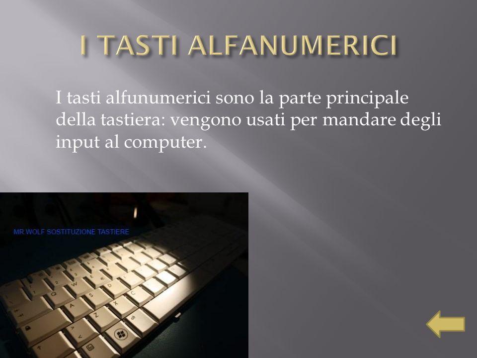 I tasti alfunumerici sono la parte principale della tastiera: vengono usati per mandare degli input al computer.
