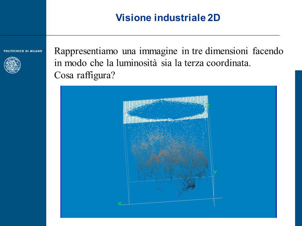Visione industriale 2D Rappresentiamo una immagine in tre dimensioni facendo in modo che la luminosità sia la terza coordinata. Cosa raffigura?