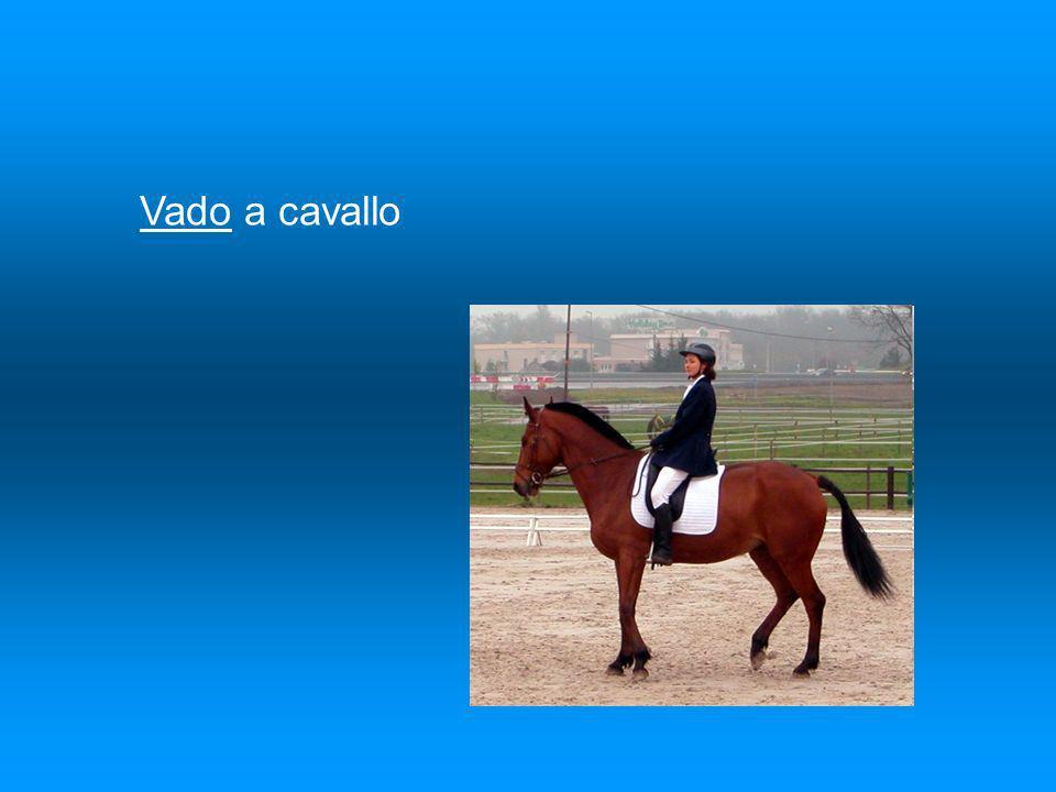 Vado a cavallo
