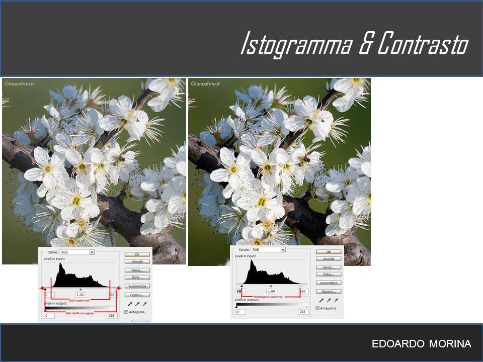 EDOARDO MORINA Istogramma & Contrasto