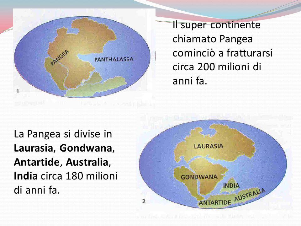 Il super continente chiamato Pangea cominciò a fratturarsi circa 200 milioni di anni fa. La Pangea si divise in Laurasia, Gondwana, Antartide, Austral