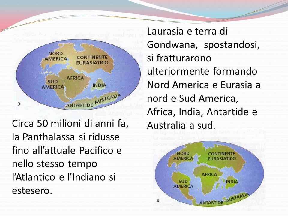 Laurasia e terra di Gondwana, spostandosi, si fratturarono ulteriormente formando Nord America e Eurasia a nord e Sud America, Africa, India, Antartide e Australia a sud.