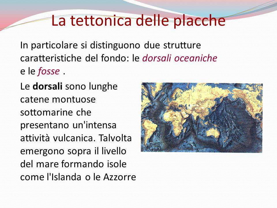 In particolare si distinguono due strutture caratteristiche del fondo: le dorsali oceaniche e le fosse. La tettonica delle placche Le dorsali sono lun