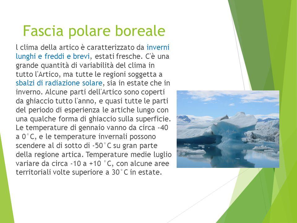 Fascia polare boreale l clima della artico è caratterizzato da inverni lunghi e freddi e brevi, estati fresche. C'è una grande quantità di variabilità