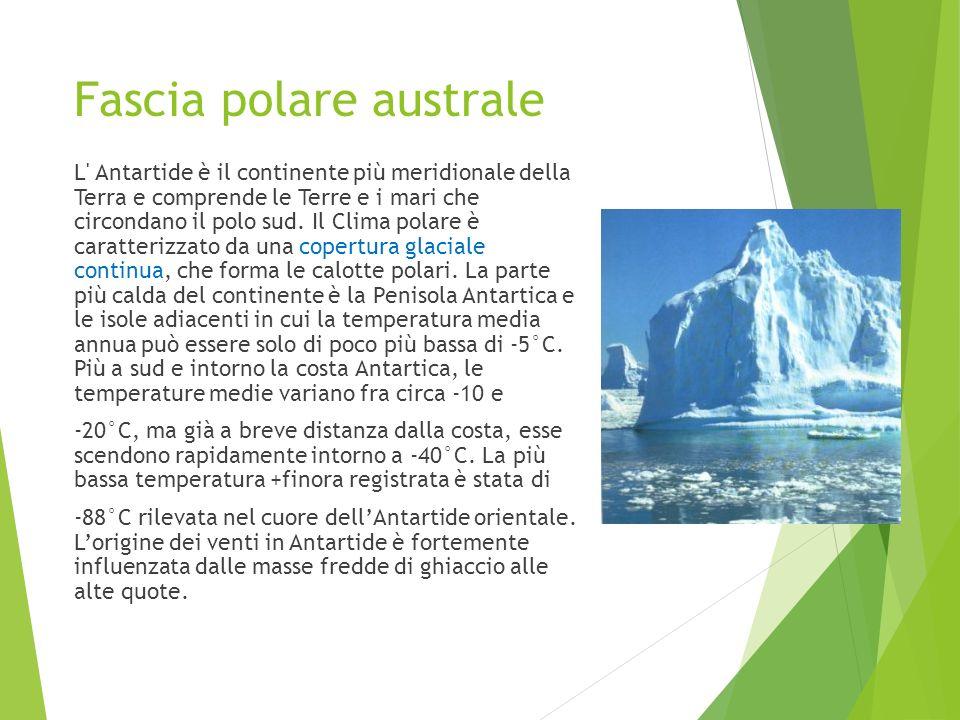 Fascia polare australe L' Antartide è il continente più meridionale della Terra e comprende le Terre e i mari che circondano il polo sud. Il Clima pol