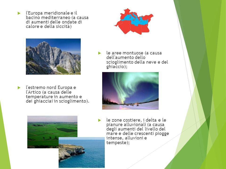 l'Europa meridionale e il bacino mediterraneo (a causa di aumenti delle ondate di calore e della siccità) l'estremo nord Europa e l'Artico (a causa de
