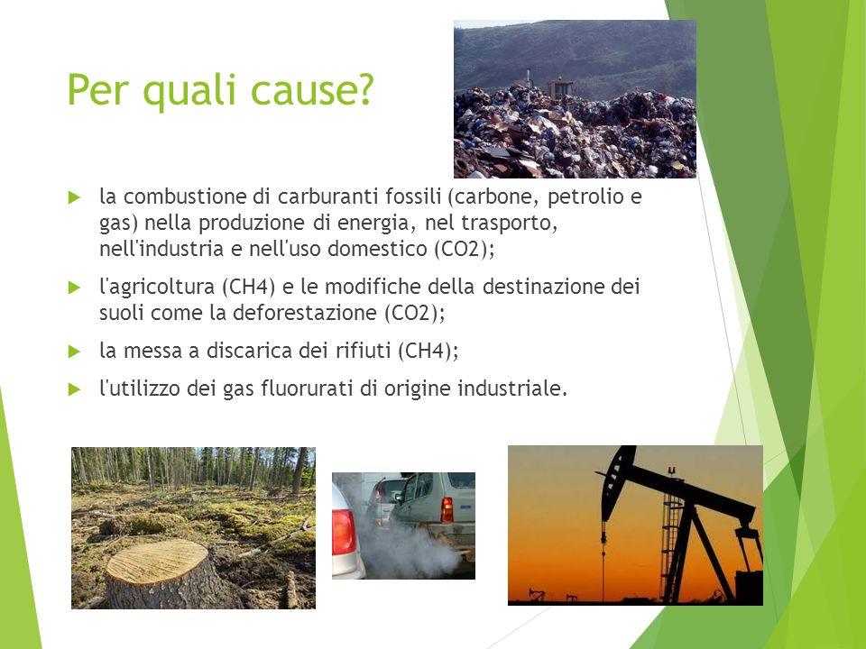 Per quali cause? la combustione di carburanti fossili (carbone, petrolio e gas) nella produzione di energia, nel trasporto, nell'industria e nell'uso