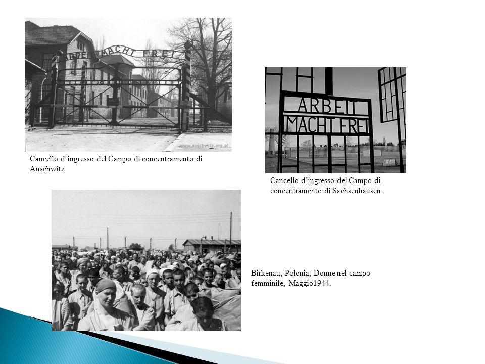 Cancello dingresso del Campo di concentramento di Auschwitz Cancello dingresso del Campo di concentramento di Sachsenhausen Birkenau, Polonia, Donne n