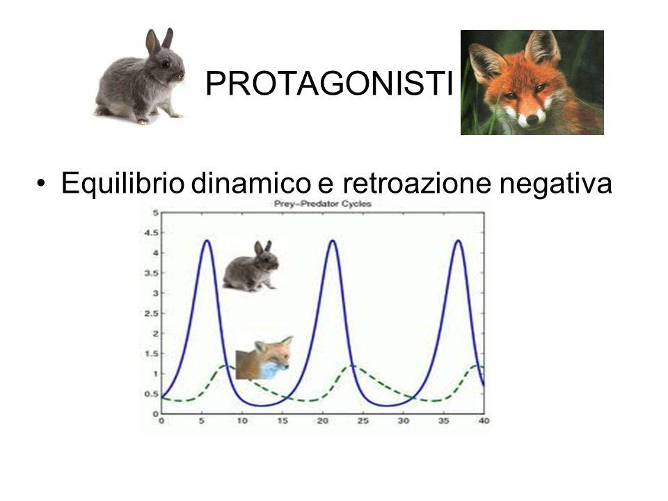 PROTAGONISTI Equilibrio dinamico e retroazione negativa