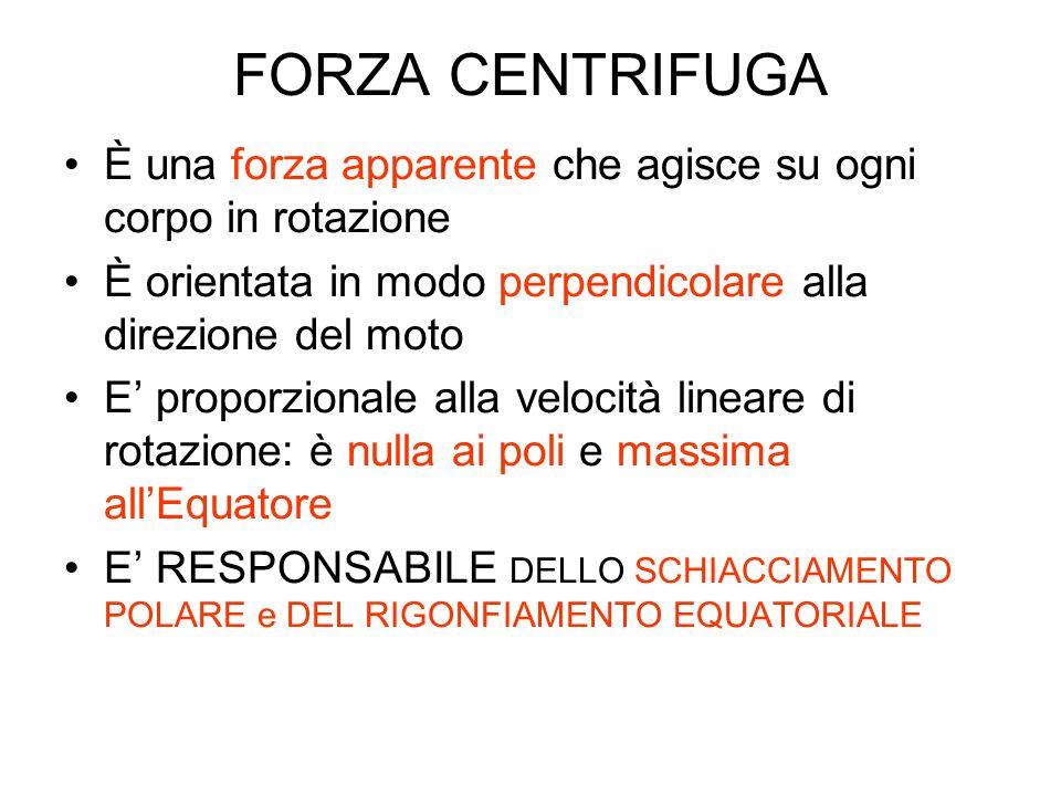 FORZA CENTRIFUGA È una forza apparente che agisce su ogni corpo in rotazione È orientata in modo perpendicolare alla direzione del moto E proporzional