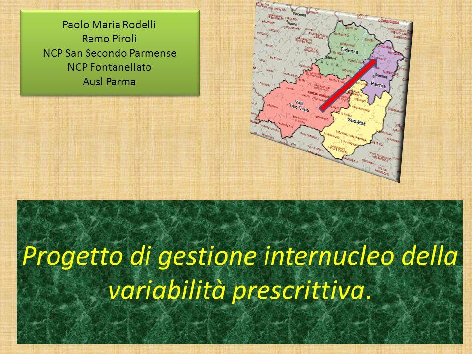 Progetto di gestione internucleo della variabilità prescrittiva. Paolo Maria Rodelli Remo Piroli NCP San Secondo Parmense NCP Fontanellato Ausl Parma