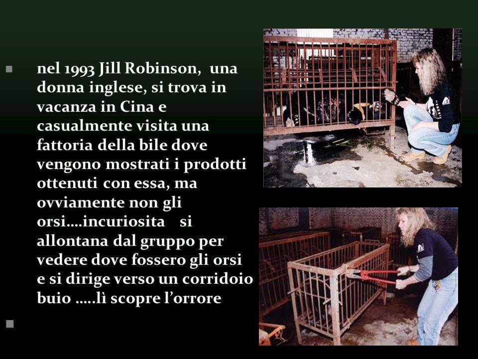 nel 1993 Jill Robinson, una donna inglese, si trova in vacanza in Cina e casualmente visita una fattoria della bile dove vengono mostrati i prodotti ottenuti con essa, ma ovviamente non gli orsi….incuriosita si allontana dal gruppo per vedere dove fossero gli orsi e si dirige verso un corridoio buio …..lì scopre lorrore nel 1993 Jill Robinson, una donna inglese, si trova in vacanza in Cina e casualmente visita una fattoria della bile dove vengono mostrati i prodotti ottenuti con essa, ma ovviamente non gli orsi….incuriosita si allontana dal gruppo per vedere dove fossero gli orsi e si dirige verso un corridoio buio …..lì scopre lorrore