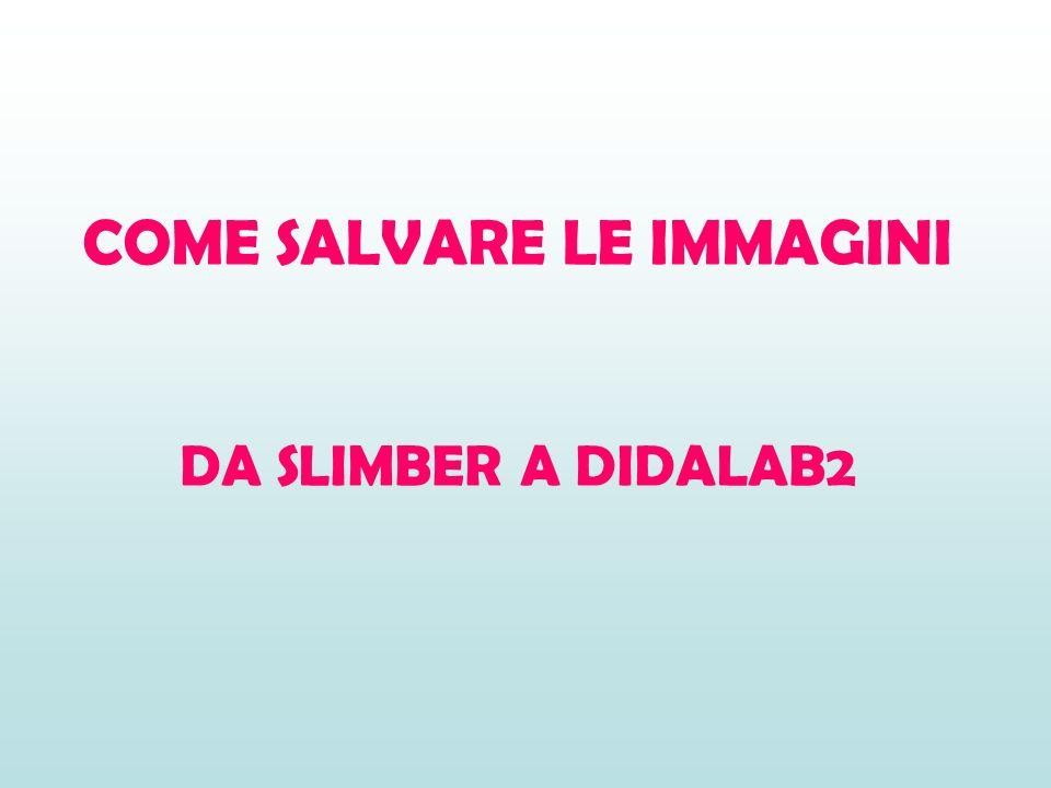 COME SALVARE LE IMMAGINI DA SLIMBER A DIDALAB2