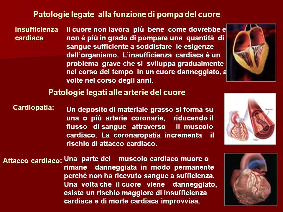 Patologie legate alla funzione di pompa del cuore Insufficienza cardiaca Il cuore non lavora più bene come dovrebbe e non è più in grado di pompare un