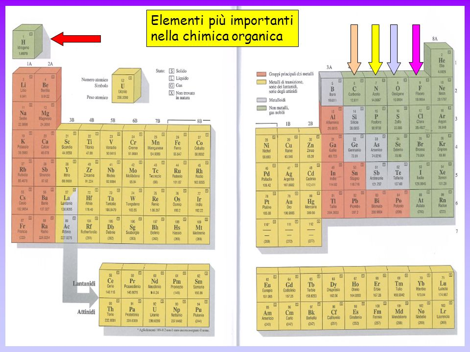 AMMINE Possono essere considerate derivati organici dell ammoniaca (NH 3 ) Metilammina (RNH 2 ) Dimetilammina (R 2 NH) Trimetilammina (R 3 N) Un carbonio legato all azoto quindi ammina primaria Due carboni legati all azoto quindi ammina secondaria Tre carboni legati all azoto quindi ammina terziaria Desinenza: -ammina