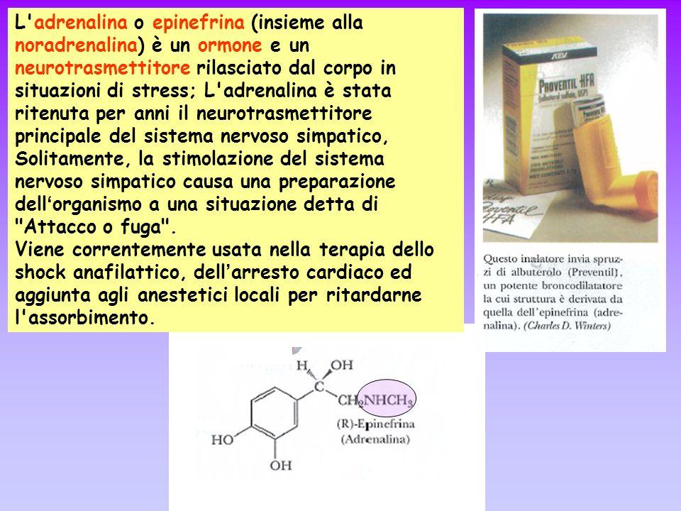 L'adrenalina o epinefrina (insieme alla noradrenalina) è un ormone e un neurotrasmettitore rilasciato dal corpo in situazioni di stress; L'adrenalina
