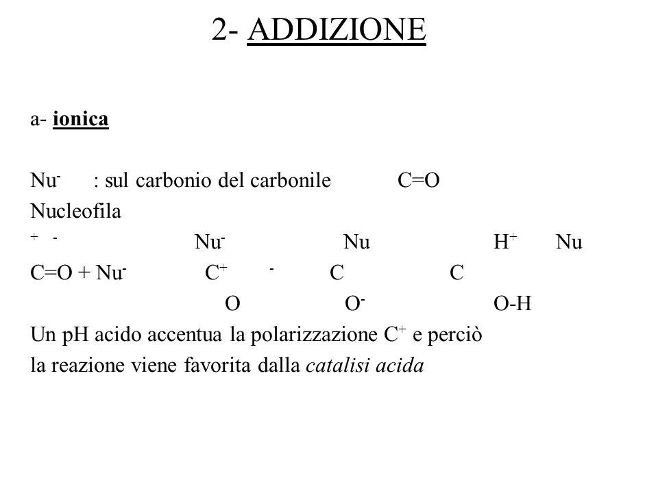 2- ADDIZIONE a- ionica Nu - : sul carbonio del carbonile C=O Nucleofila + - Nu - Nu H + Nu C=O + Nu - C + - C C O O - O-H Un pH acido accentua la pola