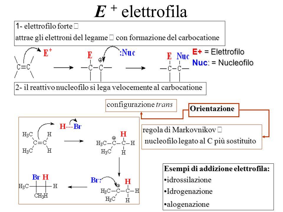 E + elettrofila E+ = Elettrofilo Nuc: = Nucleofilo 1 - elettrofilo forte 1 - elettrofilo forte attrae gli elettroni del legame con formazione del carb