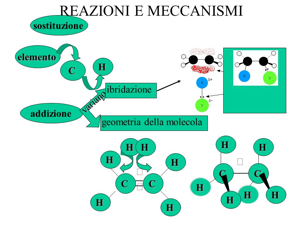REAZIONI E MECCANISMI sostituzione addizione elemento C H CC HH geometria della molecola variano ibridazione CC H H H H H HH H H H
