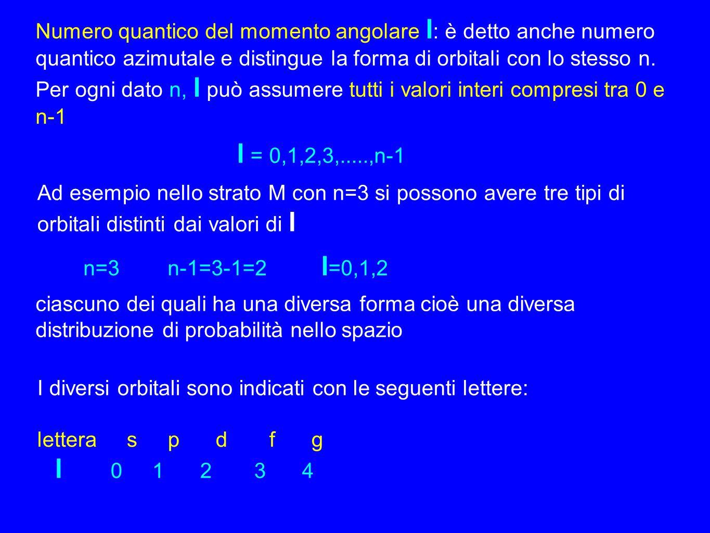 Numero quantico del momento angolare l : è detto anche numero quantico azimutale e distingue la forma di orbitali con lo stesso n. Per ogni dato n, l
