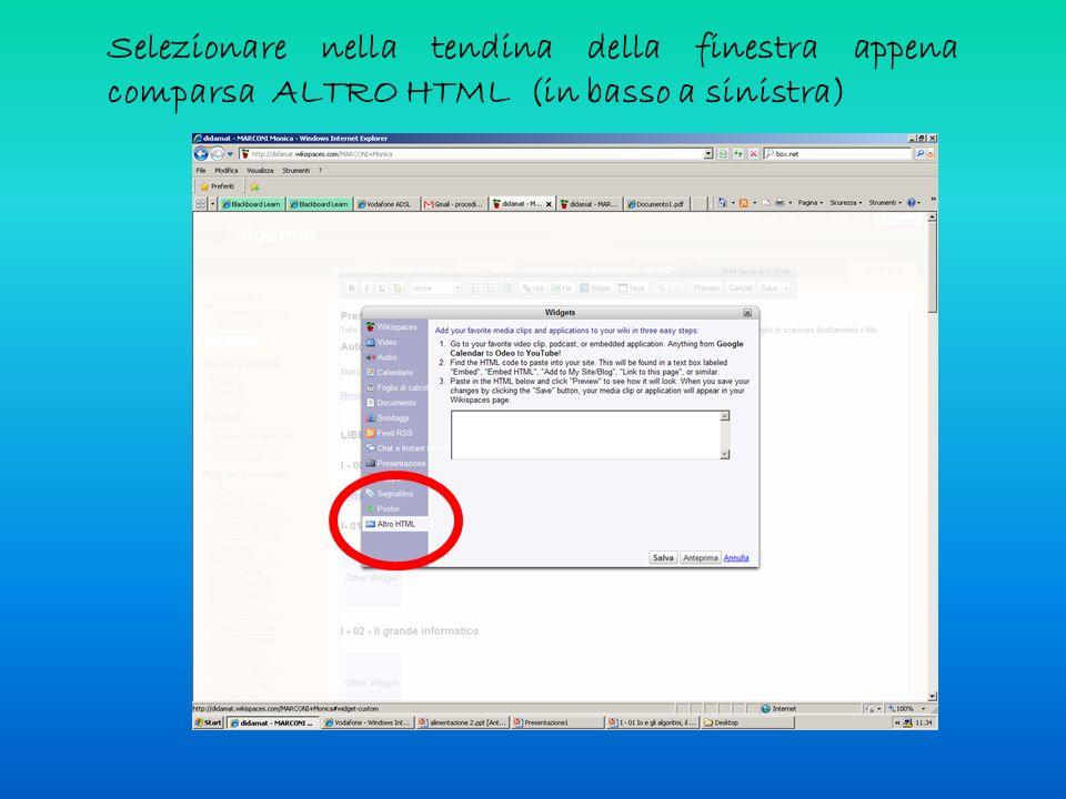 Selezionare nella tendina della finestra appena comparsa ALTRO HTML (in basso a sinistra)