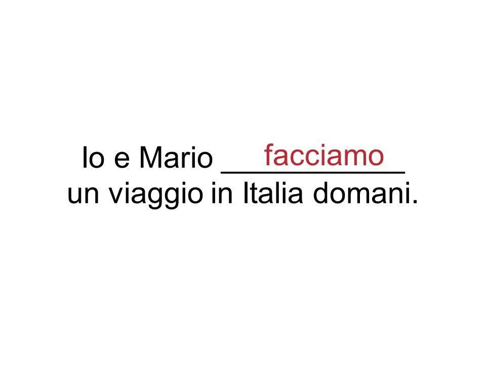 Io e Mario ___________ un viaggio in Italia domani. facciamo
