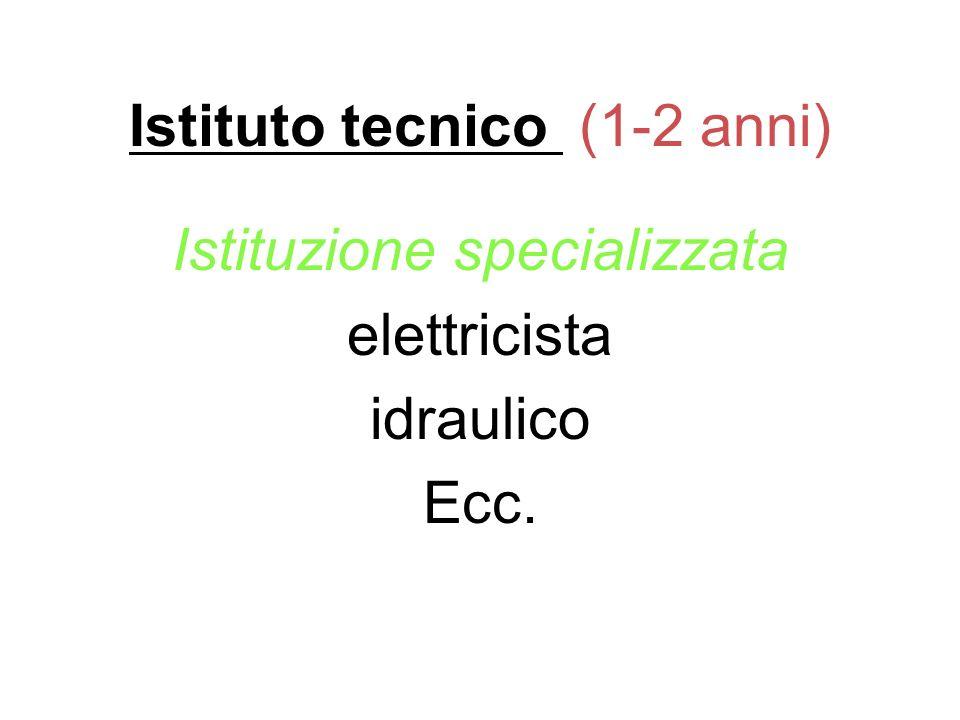 Istituto tecnico (1-2 anni) Istituzione specializzata elettricista idraulico Ecc.
