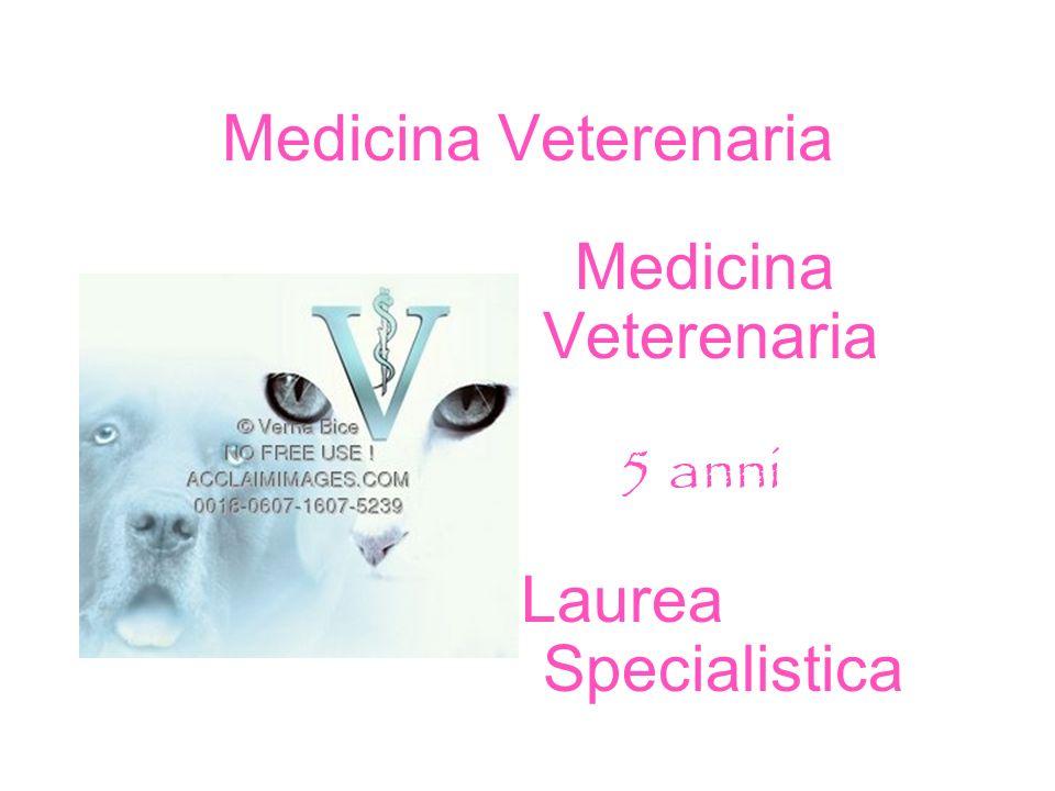 Medicina Veterenaria Laurea Specialistica 5 anni