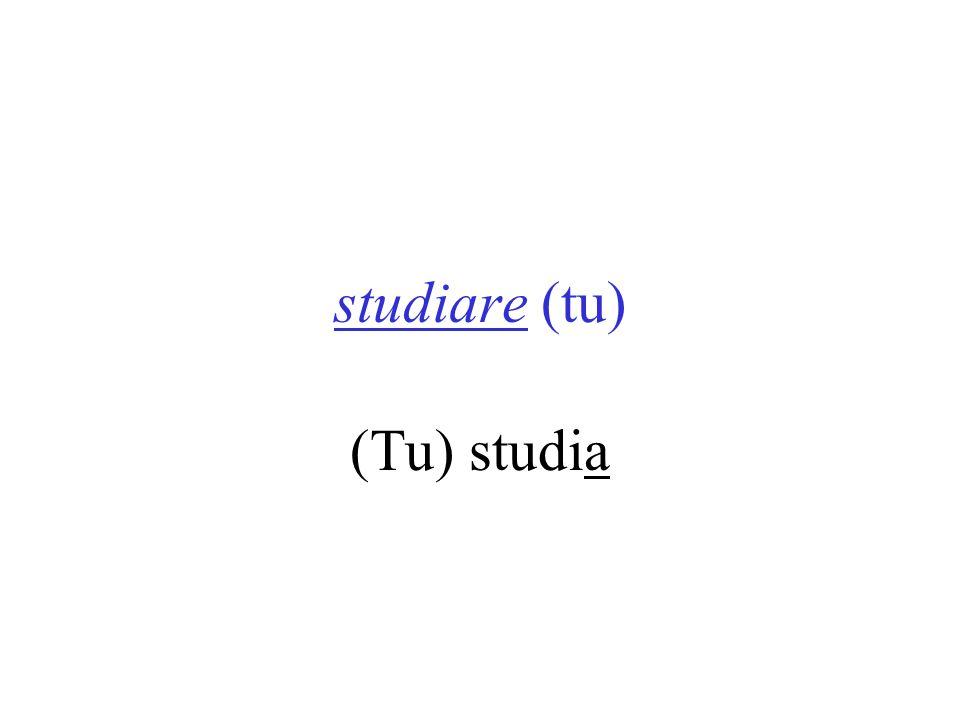 studiare (tu) (Tu) studia