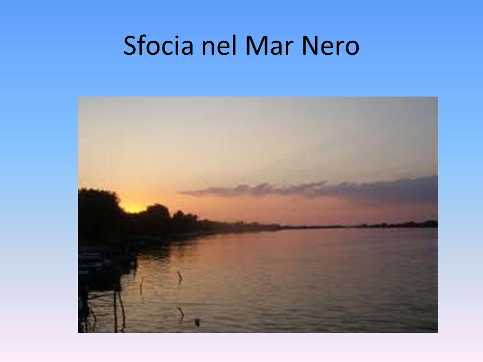 Sfocia nel Mar Nero