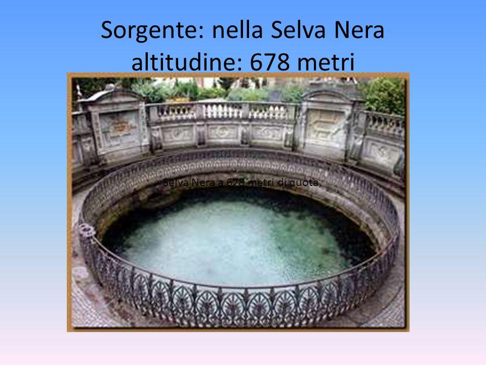 Sorgente: nella Selva Nera altitudine: 678 metri Selva Nera a 678 metri di quota,