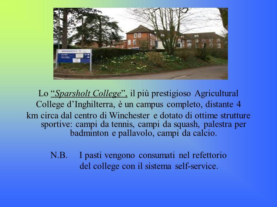Lo Sparsholt College, il più prestigioso Agricultural College dInghilterra, è un campus completo, distante 4 km circa dal centro di Winchester e dotat